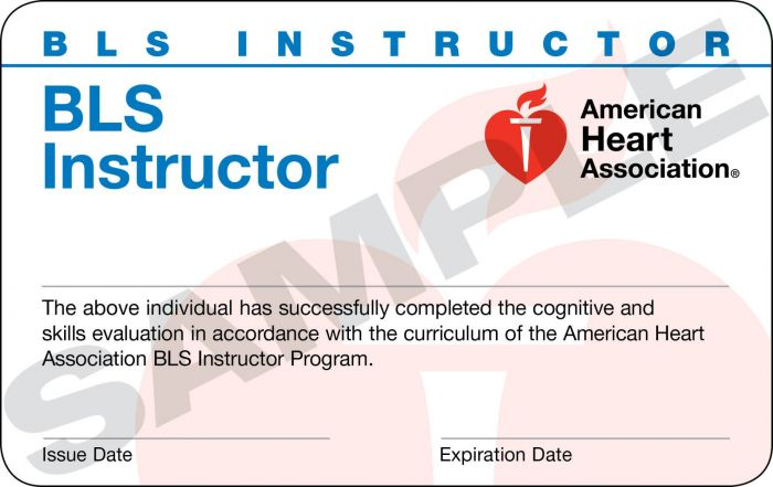 Basic Life Support (BLS) Instructor Card (24 pack)
