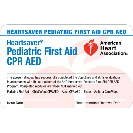Heartsaver Pediatric First Aid Card (6-pack)