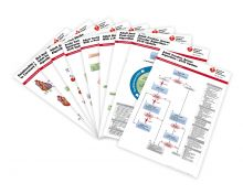 Advanced Cardiovascular Life Support (ACLS) Poster Set