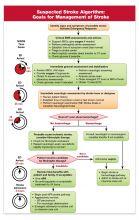 Suspected Stroke Algorithm/Prehospital Stroke Scale Card (25-pack)