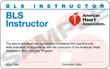 Basic Life Support (BLS) Instructor Card (3-card sheet)