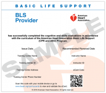 Basic Life Support (BLS) Provider eCard (2015 Guidelines)