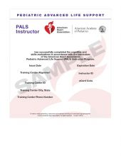 Pediatric Advanced Life Support (PALS) Instructor eCard