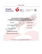 Pediatric Emergency Assessment, Recognition, and Stabilization (PEARS®) Instructor eCard