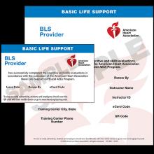 BLS Provider eCard