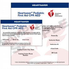 Heartsaver® Pediatric First Aid CPR AED eCard