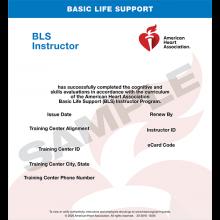 BLS Instructor eCard