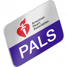 PALS Lapel Pin (10-pack)
