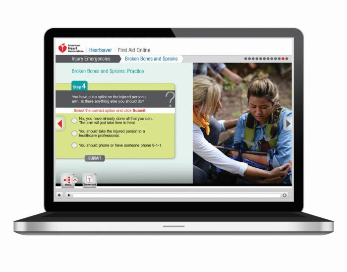 Heartsaver First Aid Online (2015)