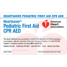 Heartsaver Pediatric First Aid Card (6-pack)