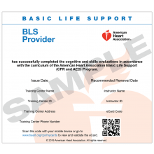 Basic Life Support (BLS) Provider eCard