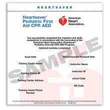 Heartsaver® Pediatric First Aid  CPR AED eCard