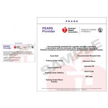 Pediatric Emergency Assessment, Recognition, and Stabilization (PEARS®) Provider eCard
